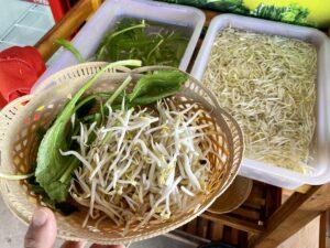 カゴに入れたクイティアオ屋の野菜